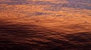 Sunset on Water Stock Footage