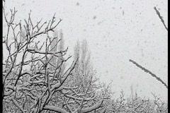 Wet adhesive snow - stock footage