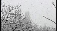 Wet adhesive snow Stock Footage