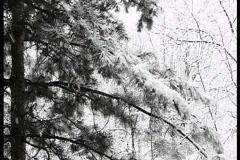Xmas snow Stock Footage