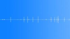 Strange crickets - sound effect
