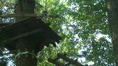 adventure park 17 - stock footage
