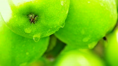 Green apples.Close up. Stock Footage