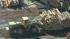 Loader lifting logs Stock Footage