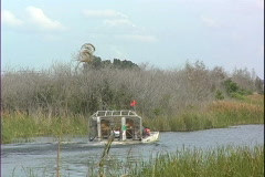 Stock Video Footage of Air Boat Leaves