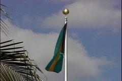 Bahamian Flag Stock Footage