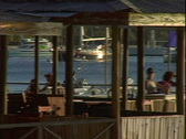 Basil's Boat Leaves-zoom Stock Footage