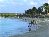 Beachcomber Morning Stock Footage