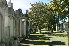 Cemetery Crypts Stock Footage