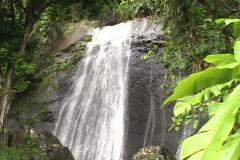 El Yunque Falls-tilt Stock Footage