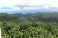 El Yunque-pan Stock Footage