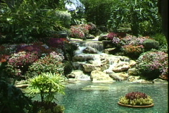 Floating Garden-ws Stock Footage