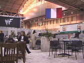 French Exhibit Stock Footage