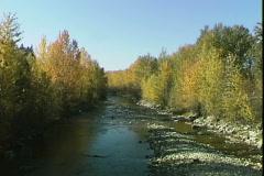 Golden Creek-ws Stock Footage