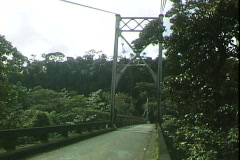 Jungle Auto Bridge Stock Footage