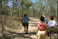 Kakadu Guided Tour-pov Stock Footage