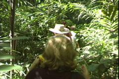 Kakadu Tourists-pov Stock Footage