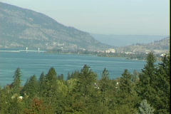 Lake Okanagan Pines-ws Stock Footage