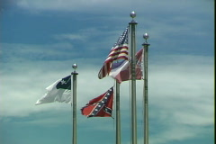 Louisiana Flags Stock Footage