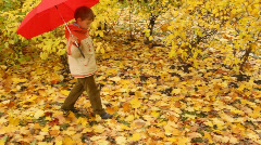 boy with umbrella walks in autumn forest - stock footage