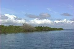 River Island-pov Stock Footage