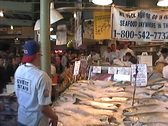 Seattle Fish Mongers Stock Footage