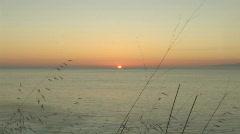 Ocean Sunset Through Grass 5 - stock footage
