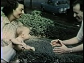 Happy Mom and Dad toss baby Stock Footage