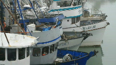 Boats Valdez Alaska fishing business in marina harbor dock P HD 7553 Stock Footage