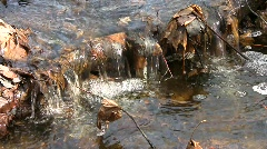 Spring purling stream running through the ravine bottom Stock Footage