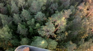 Stock Video Footage of view from a balloon basket on a forest