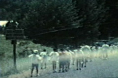 Group of kids march to pool at summer camp Stock Footage