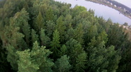 Fly over forest and water aerial Stock Footage