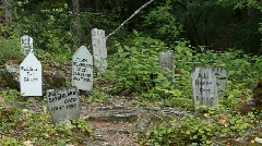 Skagway gold rush cemetery P HD 0096 Stock Footage