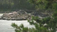 Mountain river Katun Stock Footage