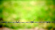 Stock Video Footage of Metal fence with barbed wire & green background