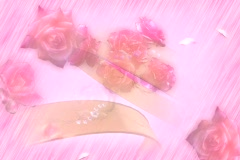 3910 Rings and Roses Wedding Background Stock Footage