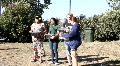 Teens Releasing Birds HD Footage