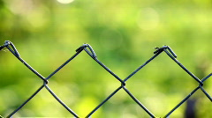 Fencing wire mesh Stock Footage