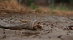 Plastic Waste in the Desert Stock Footage