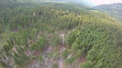 Aerial time-lapse, flight over forest high speed Stock Footage