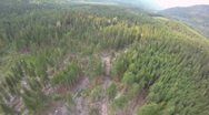 Stock Video Footage of aerial time-lapse, flight over forest high speed
