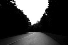 Long curving road. Spooky. SD. Stock Footage