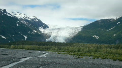Exit Glacier Alaska forest P HD 8136 Stock Footage