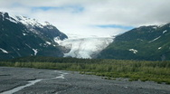 Stock Video Footage of Exit Glacier Alaska forest P HD 8136