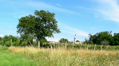 Tree, field and church Stock Footage