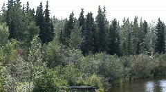 Stock Video Footage of Alaska River shore forest from boat P HD 1485