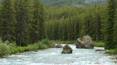 Maligne River, Jasper National Park, Alberta, Canada Stock Footage