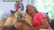Portrait of mature couple petting dog Stock Footage