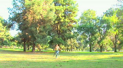 Young couple being playful and twirling around in park Stock Footage